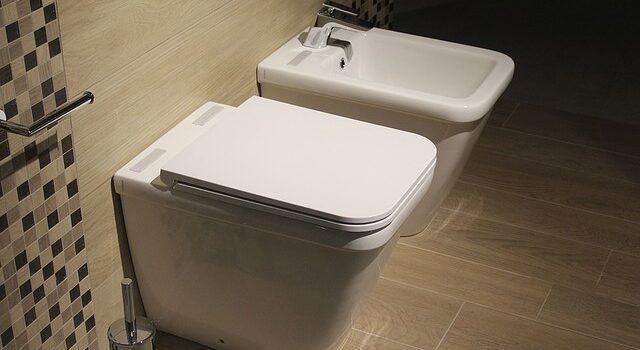Guide pour les choix de WC
